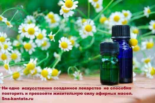 Лечебные свойства эфирных масел.