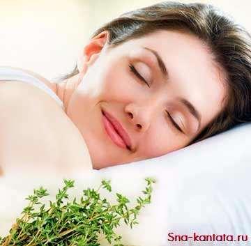 Травяная подушка.