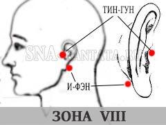 zona-umanskoj-VIII