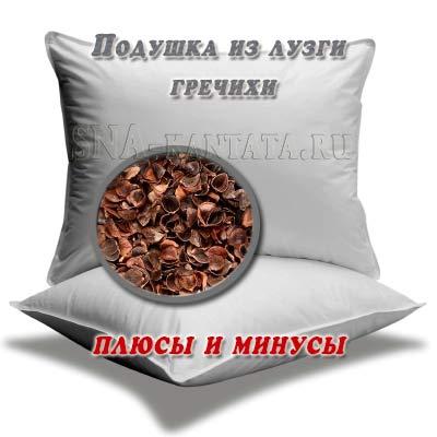 podushka-iz-luzgi-grechihi