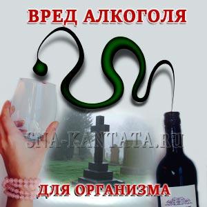 vred-alkogolya-dlya-organizma