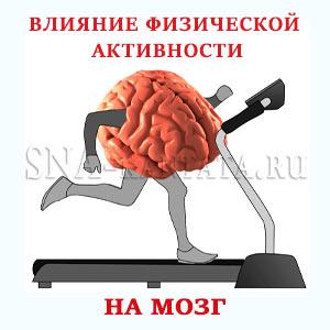 vliyanie-fizicheskoj-aktivnosti-na-mozg