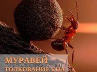 muravi-snyatsya-k-chemu