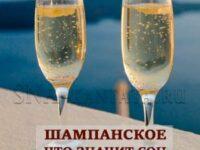 шампанское почему приснилось толкование