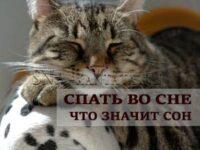 spat-snitsya-vo-sne-znachenie-grezy