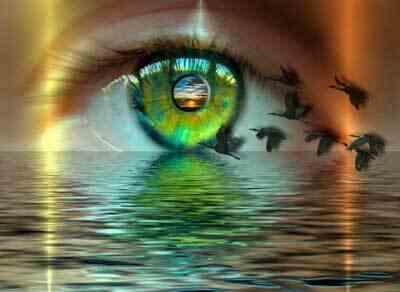Быстрые движения глаз