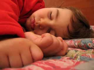 Организм во время сна